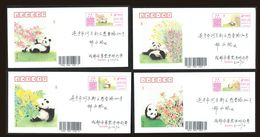 First Day Entire Cover FDC: China 2020 Panda Self-adhensive ATM Labels Set Of 4v - Andere