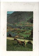 Bossòst (Espagne, Cataluna) : Vista General Desde La Carretera Del Portillon En 1961 GF. - Autres