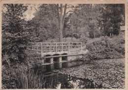 Lovenjoul - Salve Mater - Dans Le Parc - Circulé En 1949 - Bierbeek - BE - Bierbeek