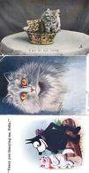 SIX Cat Cats Antique Postcard S Please Read - Chats