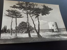 Postcard - Croatia, Medulin    (V 34759) - Croatia
