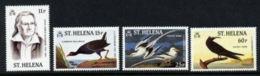 St. Helena, 1985, Audubon, Birds, Animals, Fauna, MNH, Michel 428-431 - Saint Helena Island