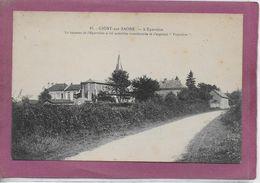 71.- GIGNY-SUR-SAONE .- L' Epervière - France
