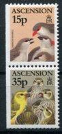 Ascension     Oiseaux    706/707 ** - Birds