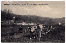 CALIZZANO - CHIESA ANTICA - CASTELLO DE' CONTI BURAGGI - SCENA CAMPESTRE - SAVONA - 1916 - Vedi Retro - Formato Piccolo - Savona