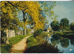Saint-Amand-Montrond - Le Canal Et Le Chàteau - Saint-Amand-Montrond