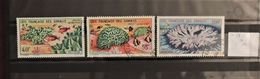 06 - 20 - Cote Française Des Somalis - Poste Aérienne N° 34 - 35 - 36 - Coraux  - Cote : 14 Euros - Côte Française Des Somalis (1894-1967)