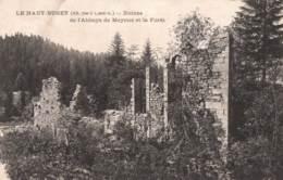 01-AIN- LE HAUT BUGEY -CPA RUINES DE L'ABBAYE DE MEYRIAT - Otros Municipios