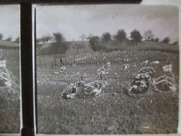 GUERRE 14-18 - PLAQUE VERRE STEREO  6 X13 - Tombes De Militaires Français - Voir Couronnes  BE - Diapositiva Su Vetro