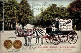 Cp Berlin, Zebragespann, Auskunftei Argus, Detektive, Friedrichstraße 31, Concours Hippique 1905 - Allemagne