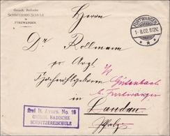 DR Dienst: Schnitzerei Schule Furtwangen Nach Landau/Pflaz 1902 - Servizio