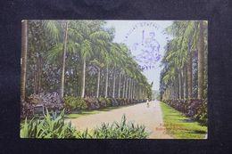 INDE - Cachet De L 'Ambassade De France Sur Carte Postale De Calcutta En 1907 Pour Paris - L 62948 - India (...-1947)