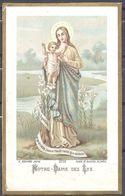 Image Pieuse Notre Dame Des Lys Bouasse Jeune 3733 - Images Religieuses