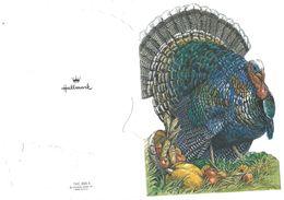 La Dinde - Thanksgiving