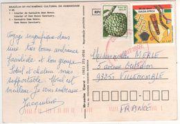 """Beaux Timbres """" Fruit , Journée De L'Afrique """" Sur Cp , Carte , Postcard Du 09/08/2000 - Brieven En Documenten"""