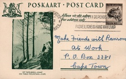 Serie Entier Postal 1 1/2d - Postcard South Africa: Op Tafelberg Kaap (on Table Mountain, Cape) - Collections, Lots & Séries