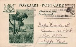 Serie Entier Postal 1 1/2d - Postcard South Africa: National Park - Nasionale Park Drakensberg - Collections, Lots & Séries