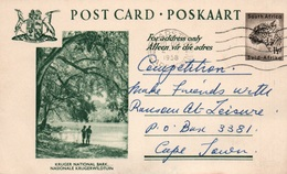 Serie Entier Postal 1 1/2d - Postcard South Africa: Kruger National Park (Nationale Krugerwildtuin) - Collections, Lots & Séries