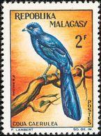 Madagascar. Malagasy 1963    Coua Bleu - Cuckoos & Turacos