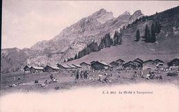 Chalets De Taveyannaz VD,  Fête De La Mi-été (2911) - VD Vaud