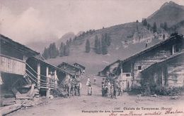 Gryon VD, Chalets De Taveyannaz, Rue Animée (1287) - VD Vaud
