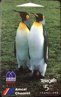 NOUVELLE-ZELANDE  -  Telecom  - King Penguins  -   $ 5 - Nuova Zelanda
