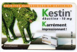Ancienne Carte Prépayée KESTIN / Powered By 365  (Voir Photos Recto/verso Et Description) - France