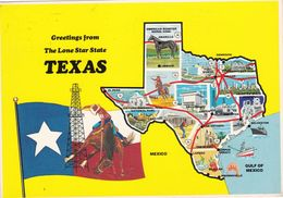 ETATS UNIS. HOUSTON (ENVOYE DE ). . GREETINGS FROM THE LONE STAR STATE TEXAS . ANNEE 1984 - Houston