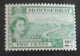 """MONTSERRAT YT 131 NEUF** MNH """"ELISABETH II"""" ANNÉE 1953 - Montserrat"""