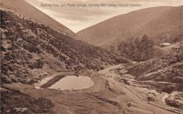 R375322 Bathing Pool And Rustic Bridge. Carding Mill Valley. Church Stretton. C. S. 58 - Mondo