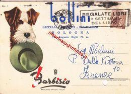 ** BOLOGNA.- PRIVATA.-** - Bologna
