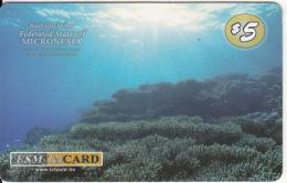 MICRONESIA - Reef Life In Micronesia, FSM Tel Prepaid Card $5, Used - Micronésie