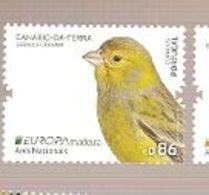 Portugal ** & Europa CPTE, National Birds, Canaries, Serinus Canaria, Madeira 2019 (8721) - Madeira