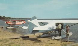 'Planes For Public Rides' Bemidji Minnesota, Seaplanes On Lake, C1960s/70s Vintage Postcard - 1946-....: Modern Tijdperk