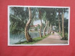 Along The Shore  Of Lake Worth Florida > Palm Beach    Ref 4148 - Palm Beach