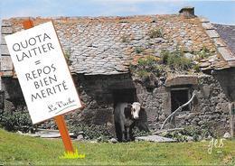 """**** """"Vache Dans Un Buron"""" Cliché De Jean-Claude Bernard 1993 - Cows"""