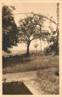 88 - REMIREMONT - Remiremont