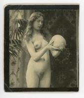 ° BEAUTES FEMININES D'AUTREFOIS ° NUE ° Photo ° - Nus Adultes (< 1960)
