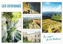 Les Cévennes Divers Aspects (2 Scans) - Languedoc-Roussillon