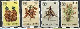 ** Sierra Leone  N° 178 à 181 Contre La Faim - Against Starve