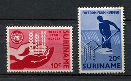 **Suriname   N°  381/382  Contre La Faim - Against Starve