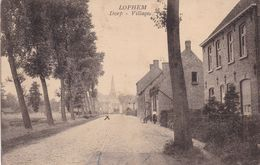 Loppem - Lophem - Dorp  Uitgave Osselaere- Lippens - Other