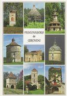 776 33 La Remarquable Diversité Des PIGONNIERS  Girondins     Le Pigeonnier  De  Gironde - Other Municipalities