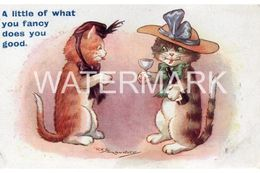 A LITTLE BIT OF WHAT YOU FANCY OLD COLOUR COMIC POSTCARD  ARTIST SIGNED REG MAURICE TWO CATS - Humor
