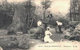 92 BOIS DE CHAVILLE DOLMENS - Chaville