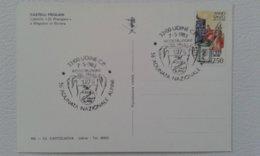 1983 - 56° ADUNATA NAZIONALE ALPINI - UDINE - ANNULLO SPECIALE - Altri