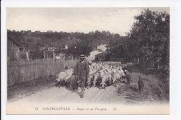 CP 88 CONTREXEVILLE Berger Et Son Troupeau  Lot De 2 Cartes - Vittel Contrexeville