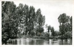 CPA -  SAINT-POURCAIN-SUR-SIOULE - BERGES DE LA SIOULE (CARTE GLACEE) - France