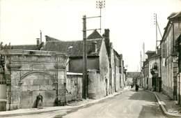89* COULANGES LE VINEUSE   Fontaine    CPSM(9x14cm)   MA107,1195 - Coulanges La Vineuse