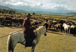 1 AK Mongolei * A Herdsman * - Mongolia